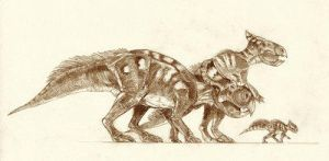 Protoceratops by Kahless28