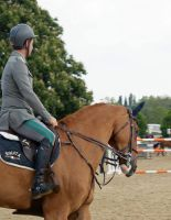 Ridden Chestnut Horse Stock 4 by TheArtisticChoice