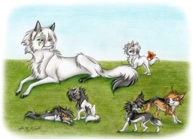 Scandinavian Wolves by Travelin