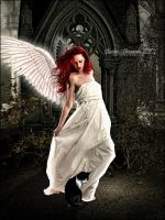 Angelic Admiration by SuzieKatz