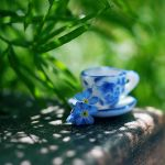 don't forget the tea time. by simoendli