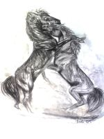 horse fighting by FindAnotherWay2Dance