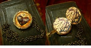 Heart Flutters... Locket by sixAstray
