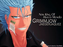 King Of Hueco Mundo - Grimmjow Jaegerjaquez by CkayShirley