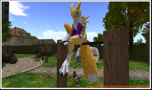 Rn-renamon125 by bobcatt