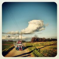 Mario Kart IRL by VicDeS-P