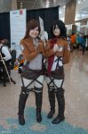 Sasha Braus and Mikasa Ackerman - Attack On Titan by Garivel