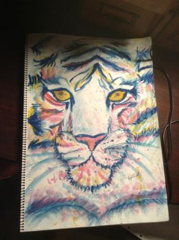 Tiger In Oil Pastel and Water Colours by bec-waz-ere27