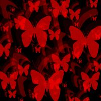 Red Butterflies on Black by Bavia