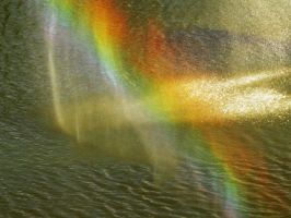 Rainbow in the Pond by RayOfLight1005