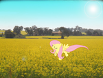 Fluttershy's Fields of Yellow by Camsy34