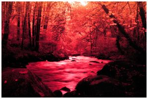 River of blood, Forest of despair. by Cora-Bokey