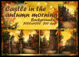 Castle in the Autumn Morning by KlaraKay