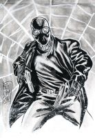 Spider-Man Noir by FrancescoCammardella