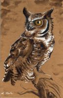 Great Horned Owl by PonderosaPower