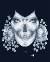 Skull by dimary