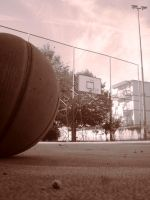 basket by SCHIATTAMUORT
