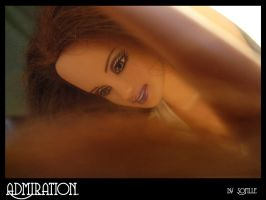 +admiration+ by sofille