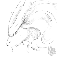 .Suicune. by InuMimi