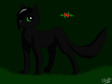 Hollyleaf by Storm-berry
