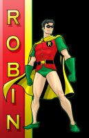 Robin DC Young Bloods Series by Thuddleston