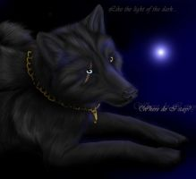 Like the light of the dark by Thyria
