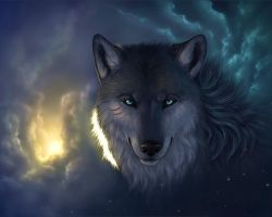 Dark wolf by Mephystal-4eva