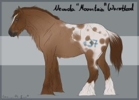 Nevada Import 37 by BRls-love-is-MY-Live
