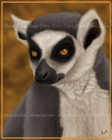 Lovely Lemur by Chaotica-I