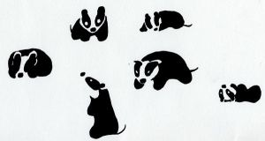 Badger character sheet by cjhonline
