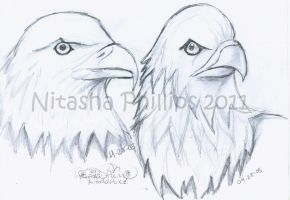 EAGLES O__O  OLD by Tanis711