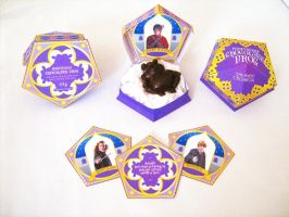 HoneyDukes Chocolate Frog box -With Matching cards by Gaddia