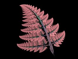 Frost Pink Fern Frond by Gibson125