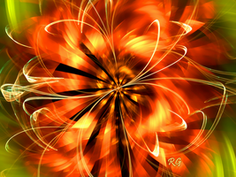 Tiger Lily by fractal1