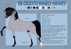 Bloodstained Heart Reference Sheet {Equisona} by faithandfreedom