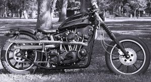 79 Sportster bw by StallionDesigns