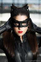 THE DARK KNIGHT RISES - CATWOMAN by Staceyleeh