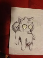 Poor Little Pup by jess-the-red-head