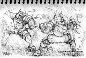 Training In Rain by timwann