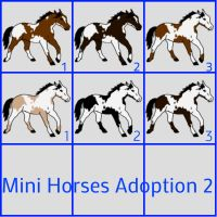 Mini Horses Adoption 2 by Merel200Howrse