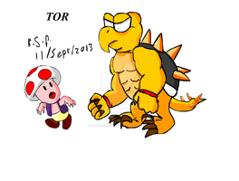 TOR an original Mario World Character by TimeLordParadox
