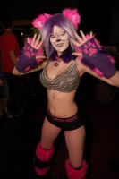 Did the Cheshire Cat Smile Your Way? by dauterofapervetninja