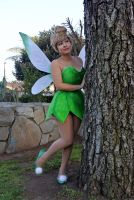 Tinkerbell : 15 by Lil-Kute-Dream