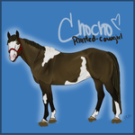 Chocho-Paint Horse by painted-cowgirl