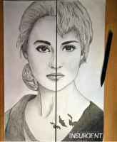 Tris's evolution from Abnegation to Dauntless by ThresaDory