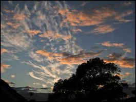 My Sky Tonight by sags