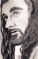 Thorin Oakenshield by ailema001
