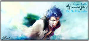 Grimmjow by thenti