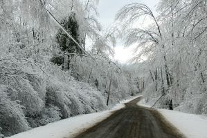 ice storm pics by imaginee