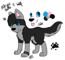 Midnight Belle Reference Sheet 2014 by CollectionOfWhiskers